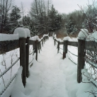 Snowshoeing in Millbrook Valley Trails